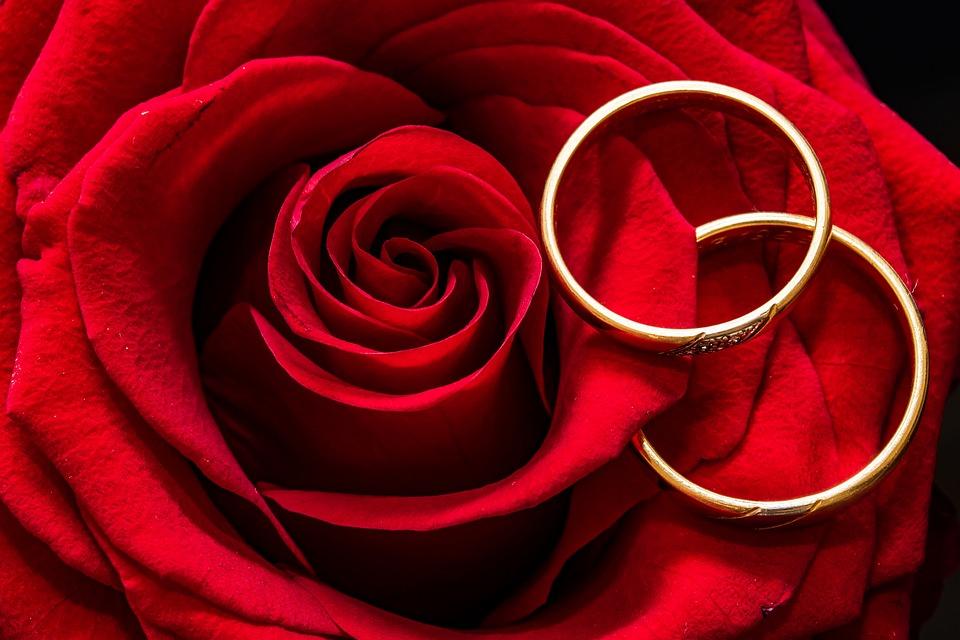 Free photo Rose Gold Rings Rings Wedding Rings Rose Is Lying Max Pixel