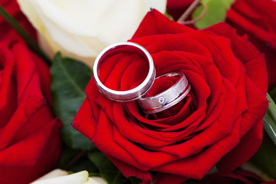 free photo rose romantic flowers red wedding together love max pixel