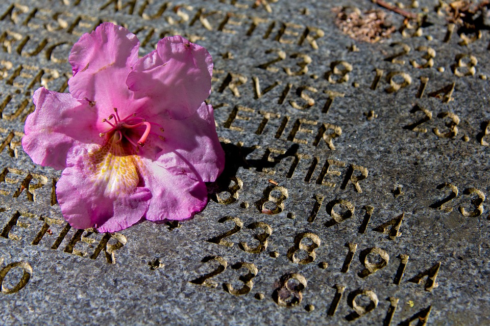 Grave, Rose, Stone, Monument, First World War