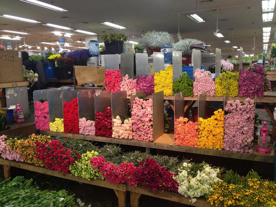 Flowers, Rose, Storage, Market
