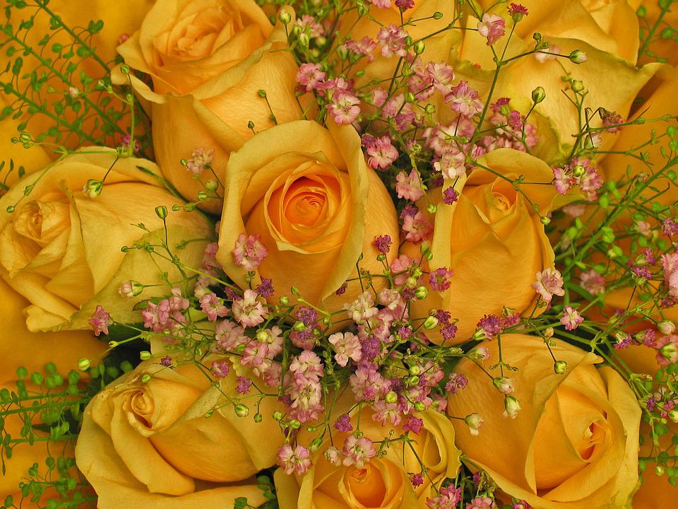 Bouquet Birthday Greeting Roses Flowers Yellow
