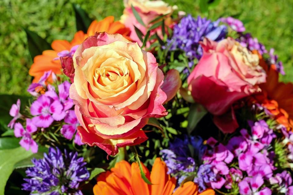 Free photo Roses Bouquet Flowers Cut Flowers Color Colorful - Max Pixel
