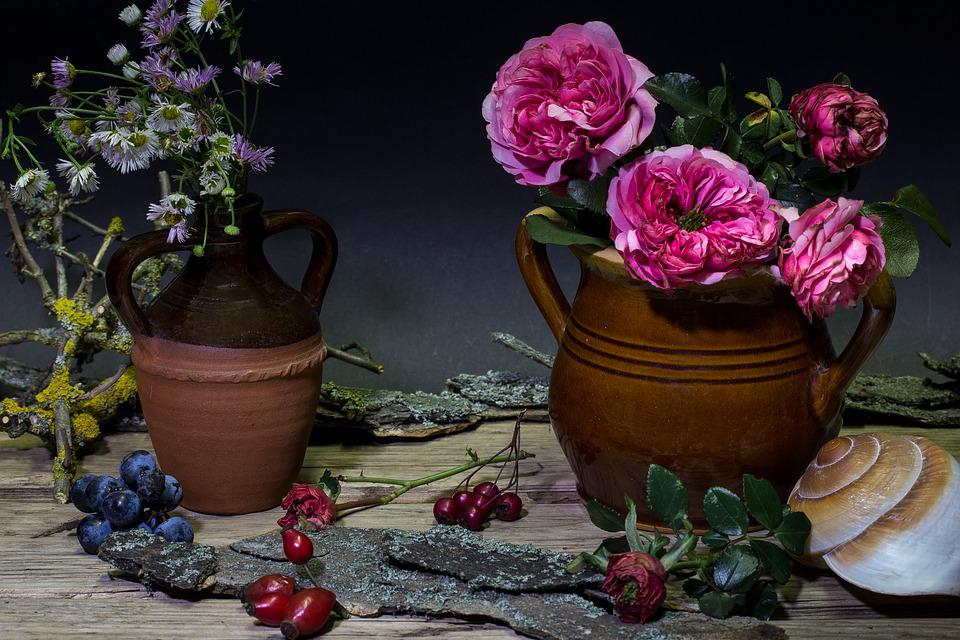Still Life, Flowers, Roses, Vase, Deco, Mussels