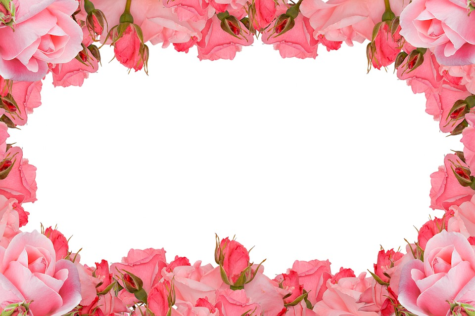 Www Double Roses Frame Love Pictures | www.picturesboss.com