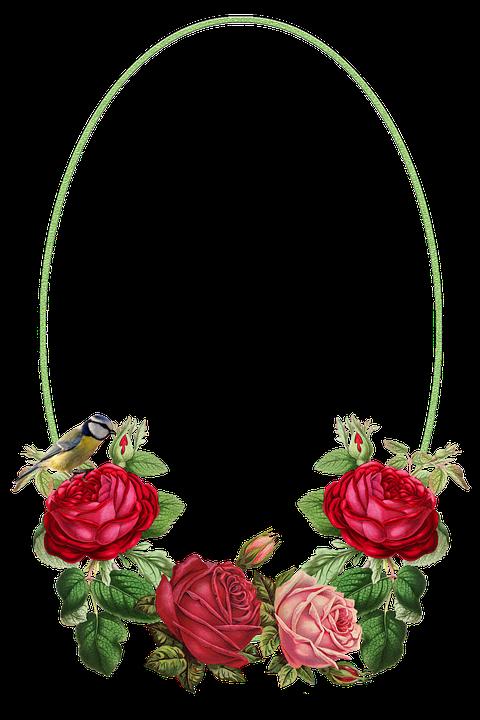 Flowers, Frame, Roses, Bird