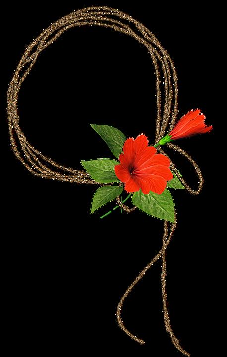 Red, Roses, Frame, Flower, Nature, Romance, Gift