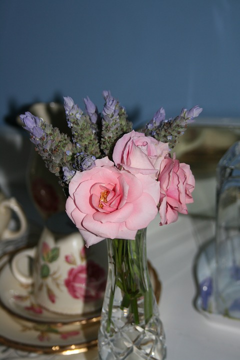 Still Life, Roses, Table, Flower, Love, Shabby Chic
