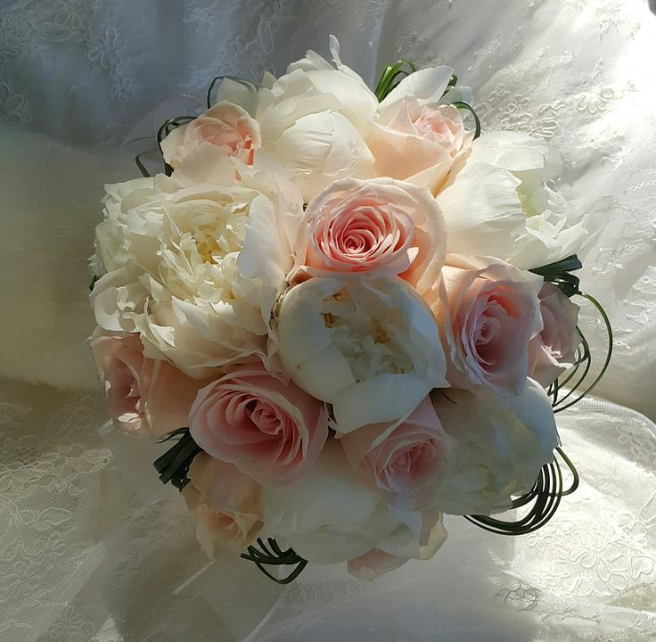 Bouquet, Roses, Flower, Pink, Plant, White, Color