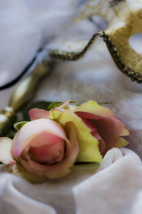Romance, Romantic, Pink, Roses, Blossom, Bloom, Flower
