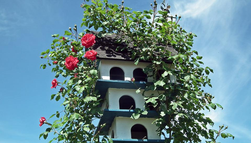 Birdhouse, Ornament, Wooden, Shed, Flowers, Roses