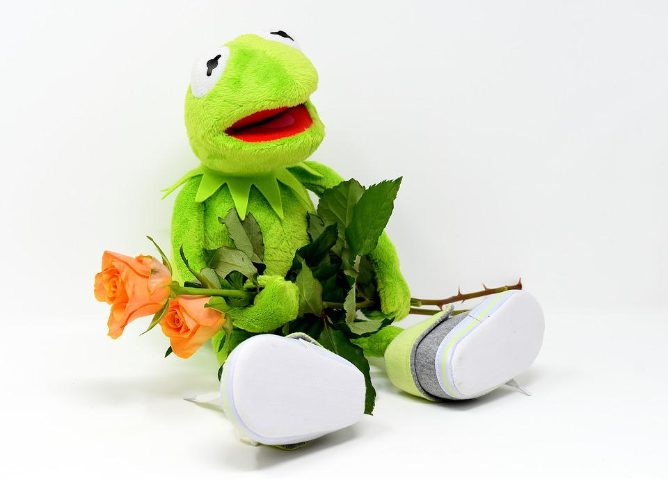 Free photo roses soft toy greetings frog get well soon kermit max kermit greetings frog get well soon roses soft toy m4hsunfo