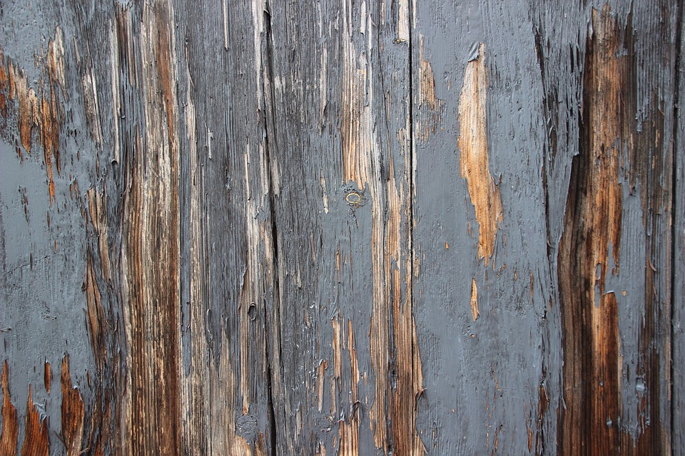 Free Photo Rot Wall Wood Texture Old Pattern Background Max Pixel