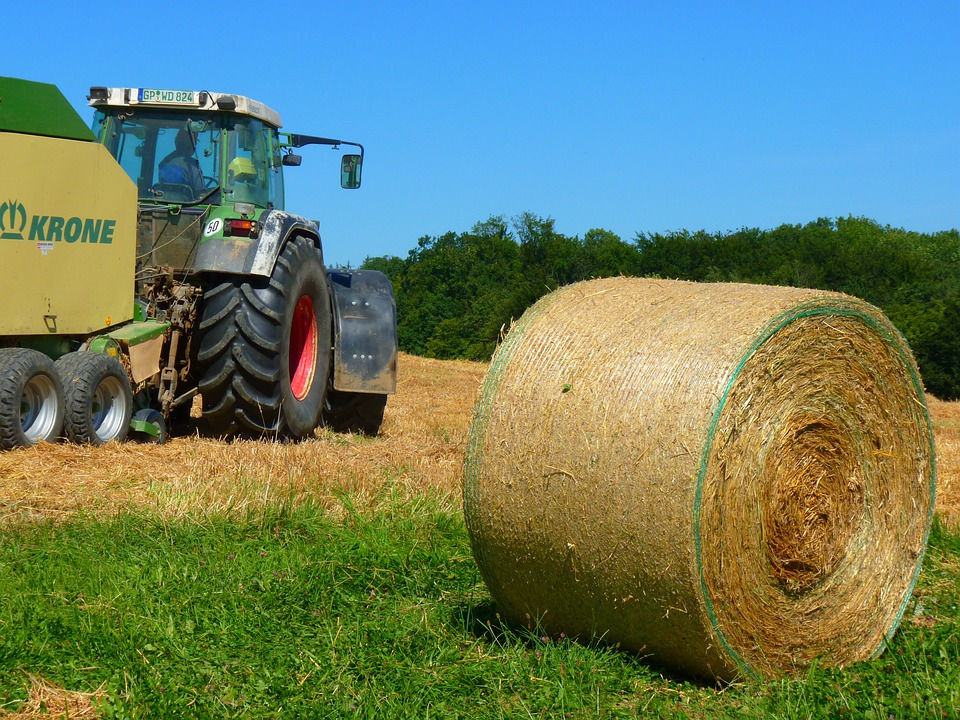 Harvest, Harvested, Field, Straw, Round Bales, Tractor
