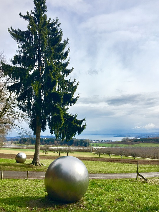 Tree, Ball, Meadow, Lake Constance, Round, Nature