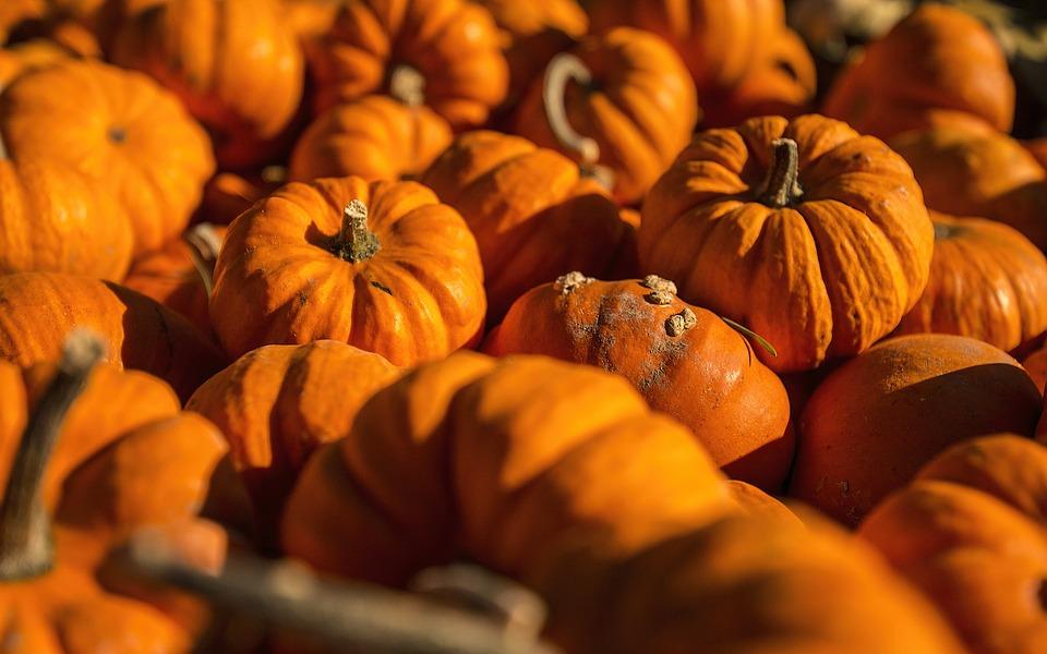 Vegetables, Pumpkin, Pumpkins, Pumpkin Carving, Round