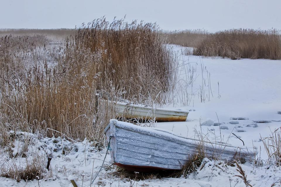 Winter, Snow, Wintry, Boot, Reed, Rowing Boats