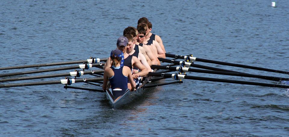Rowing, Scullers, Oars, Lake, Boat, Sport, Competition
