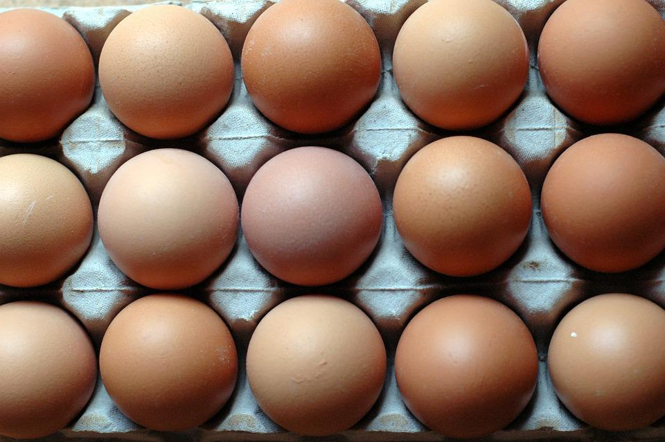Eggs, Rows, Patterns, Nutrition