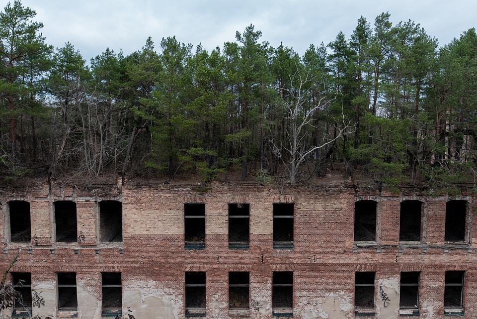 Beelitz, Health Resorts, Ruin, Uninhabited, Green Roof