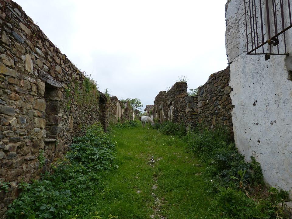 Horse, Abandoned, Shrubs, Ruins, Stones, Houses, Broken