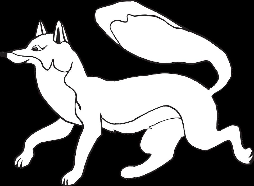Fox, Running, Tail, Fur, Animal, Wild, Mammal