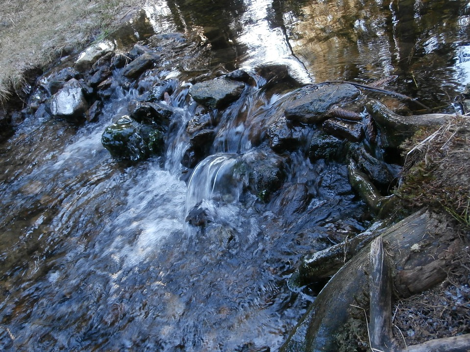 Stream, Water, Running Water