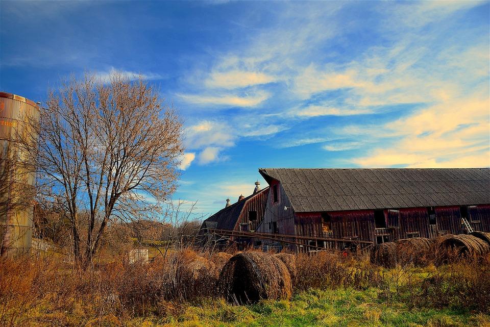 Barn, Farm, Agriculture, Rural, Farming, Country