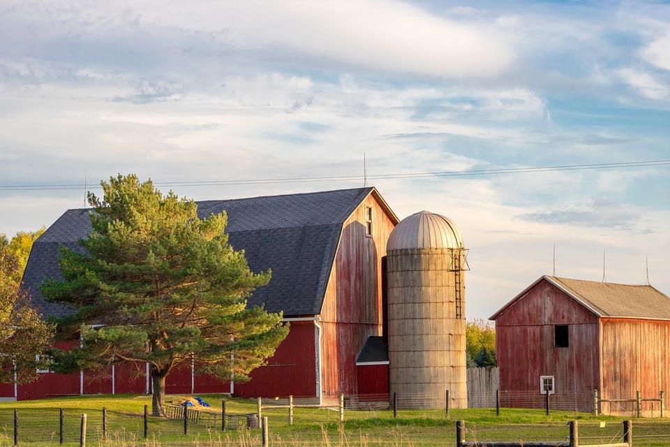 Farm, Rural, Barn, Silo, Farmland, Countryside