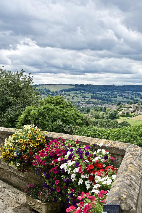 Nature, Countryside, Rural, Outdoors, Flowers, View