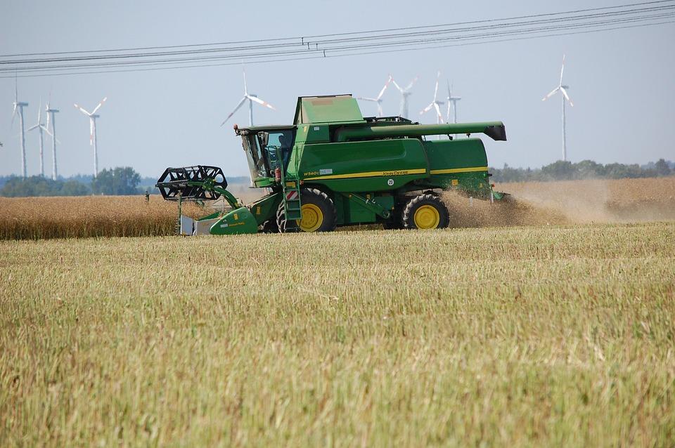 Field, Harvest, Agriculture, Landscape, Nature, Rural
