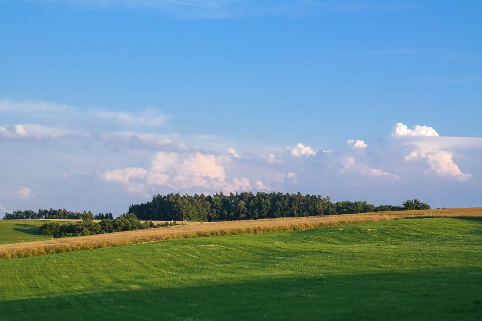Landscape, Meadow, Field, Sky, Clouds, Nature, Rural