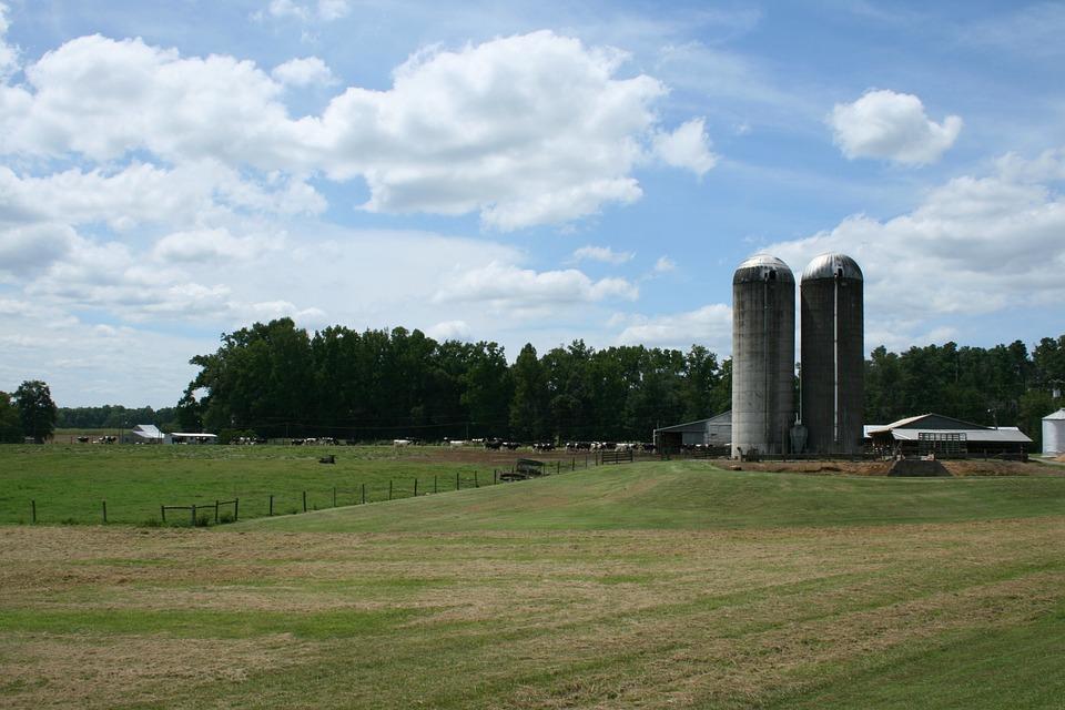 Farm, Silo, Sky, Green, Field, Pasture, Rural, Farming