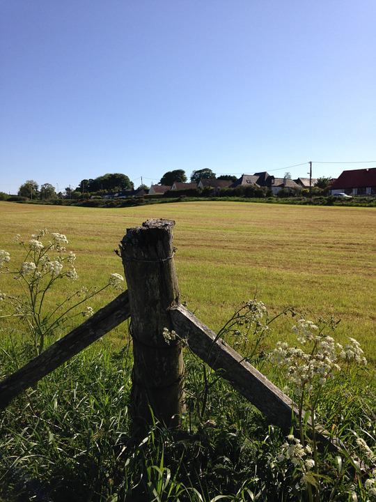 Fence, Post, Field, Rural, Grass, Green, Wooden, Wire