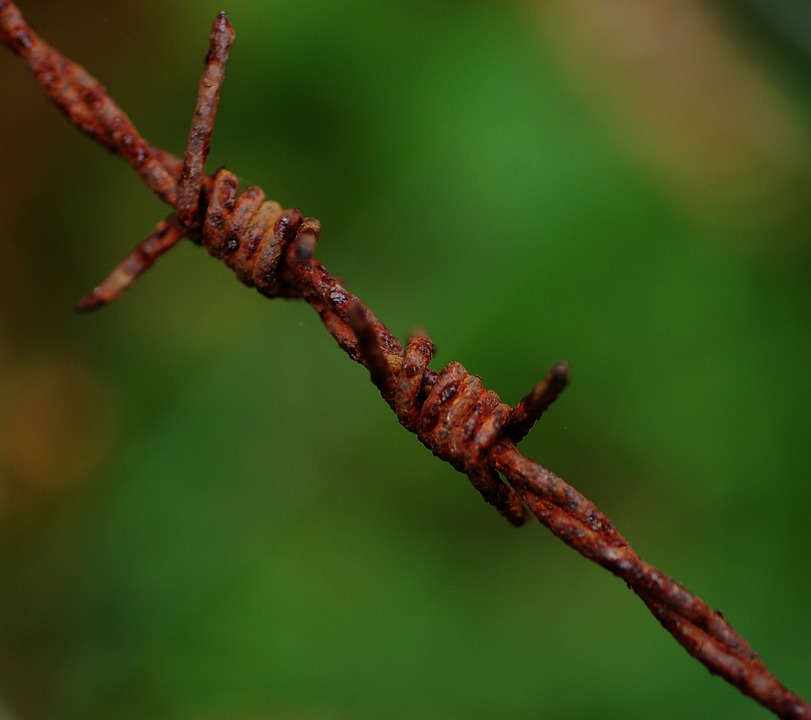 Barbed Wire, Oxide, Green, Rust, Iron