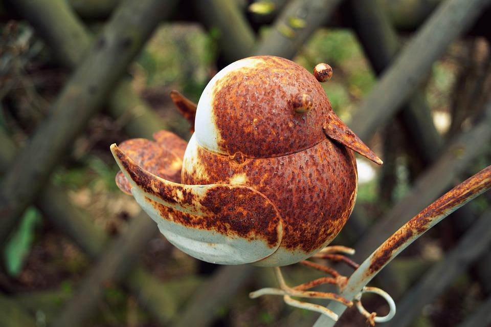 Metal, Bird, Stainless, Rusty, Rusted, Old, Deco