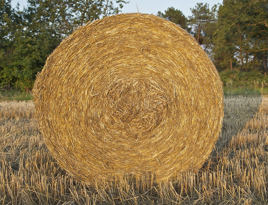 France, Farm, Rural, Rustic, Hay, Bale, Crop, Feed
