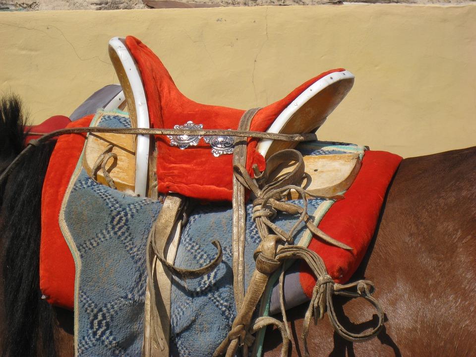 Saddle, Horse, Mongolia