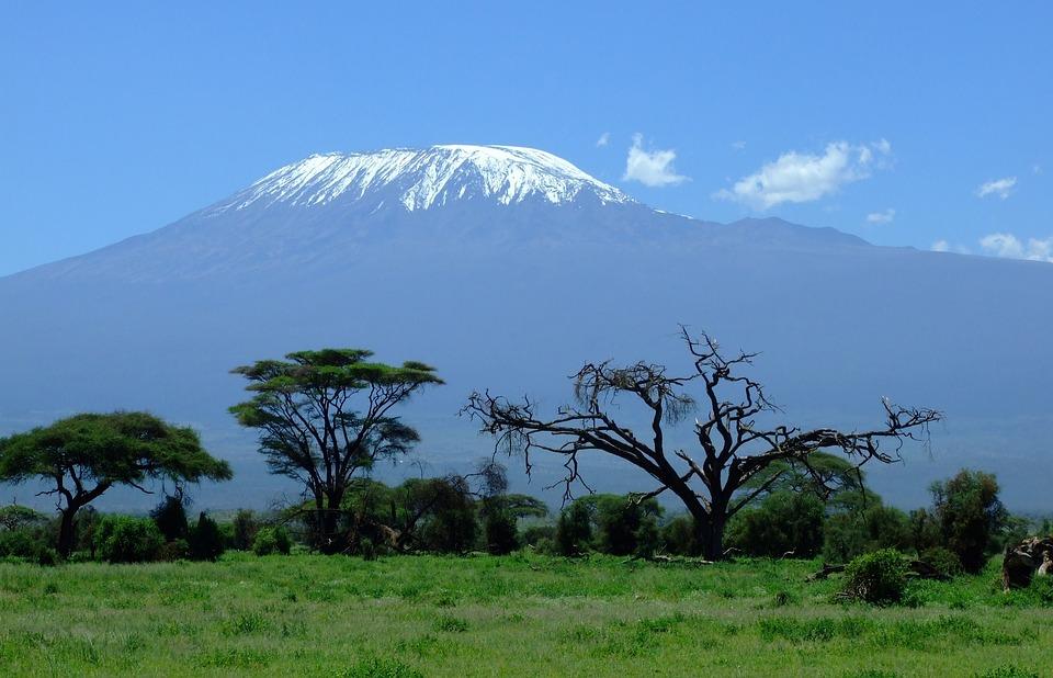 Kilimanjaro, Kenya, Mountain, Amboseli, Safari, Africa