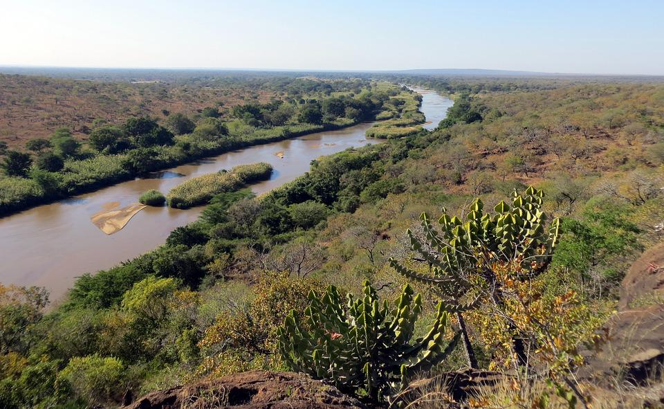 Africa, Wild, Nature, Safari, Reserve, Wilderness