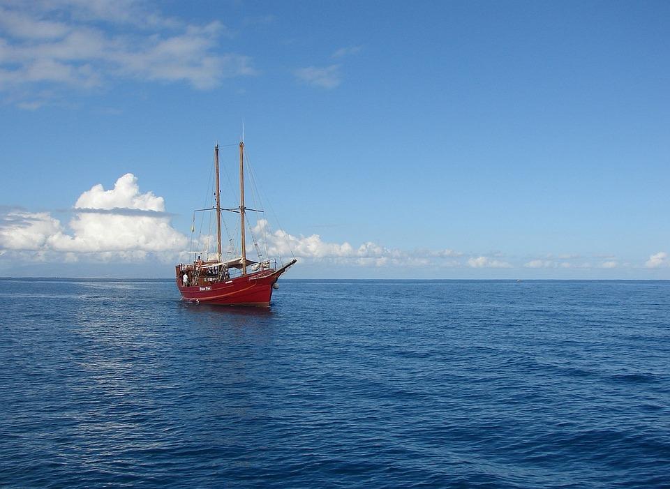 Sailing Boat, Body Of Water, Sea, Craft, Boat, Ocean