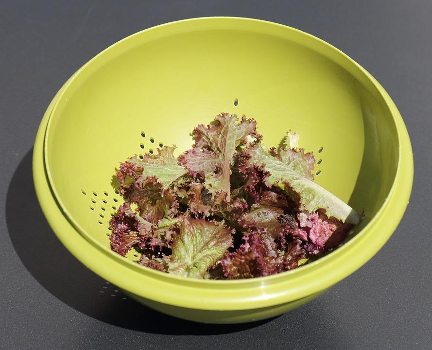 Salad, Colander, Green, Plastic Mesh