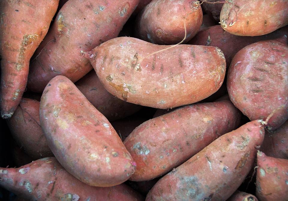 Market, Vegetables, Fresh, Farmers Markets, Sale, Stand