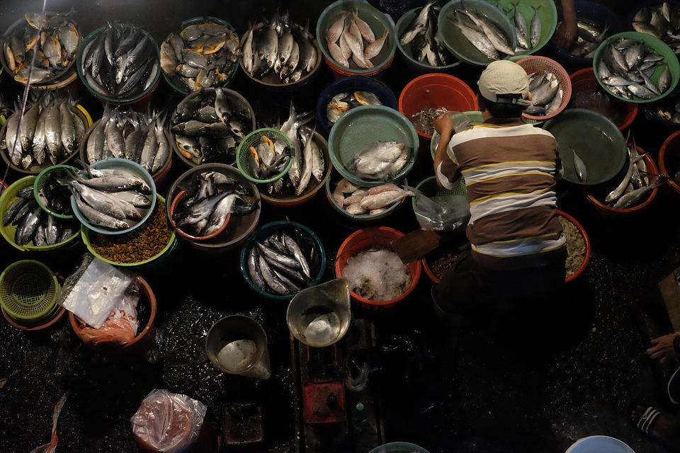 Fish, Market, Man, Bucket, Animal, Seller, Sales