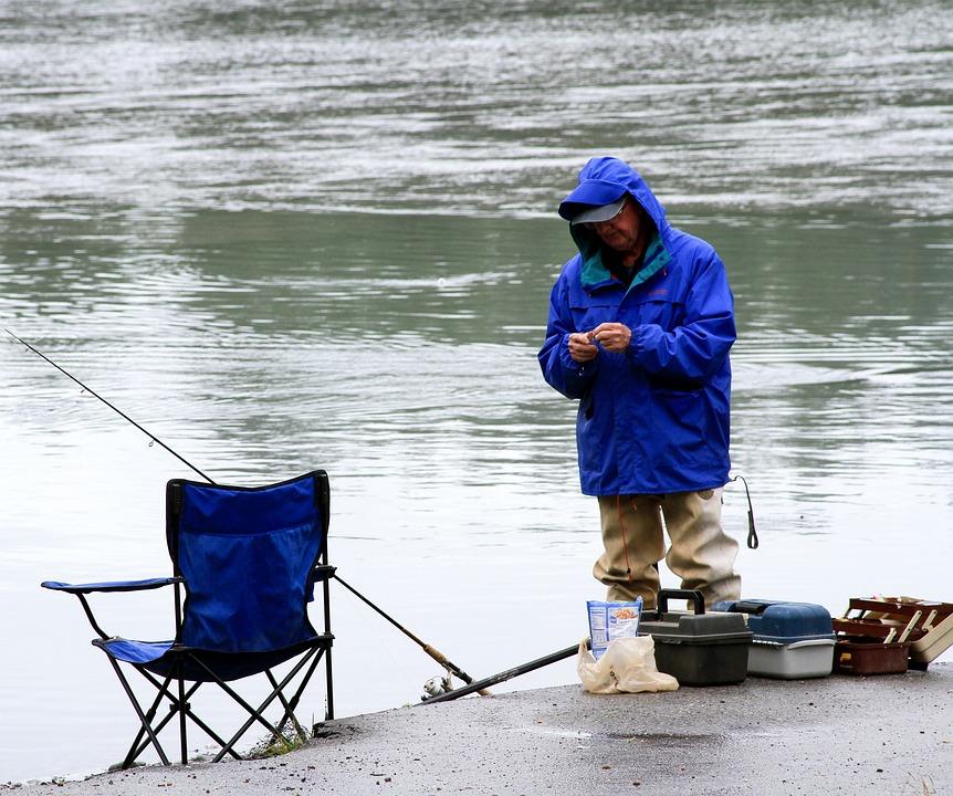 Fishing, Salmon, Alaska, Food, Seafood, Delicious