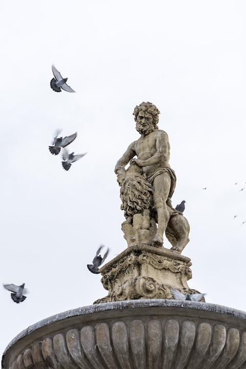Pigeons, Statue, Simple, Birds, Samson