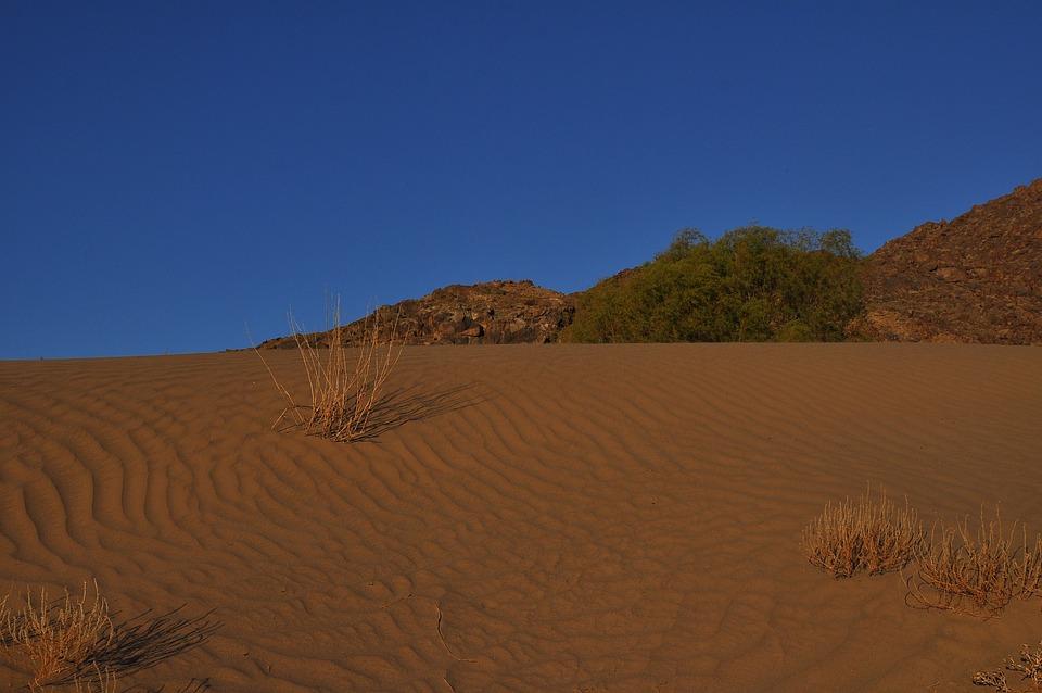 Desert, Arid, Sand, Dry, Hill, Dune, Loneliness