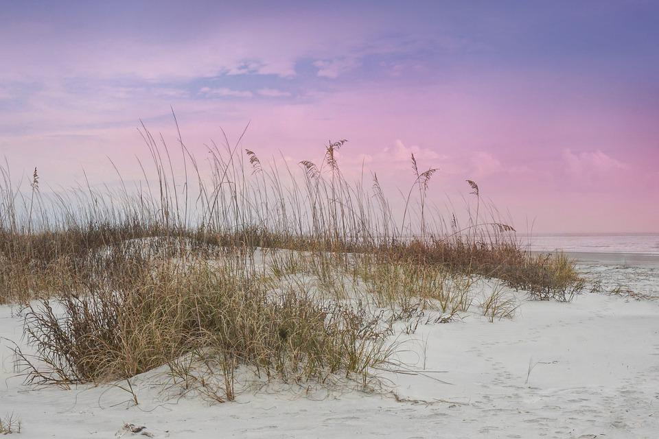 Seascape, Landscape, Ocean, Sea, Beach, Sand, Dunes