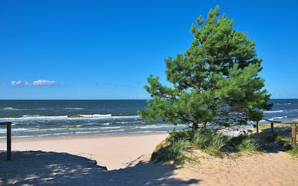 Sea, Landscape, Beach, The Entrance To The Beach, Sand