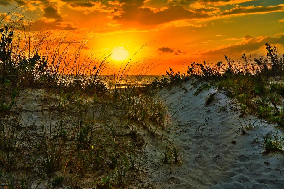 Gulf, Beach, Sand, Travel, Florida, Ocean, Water