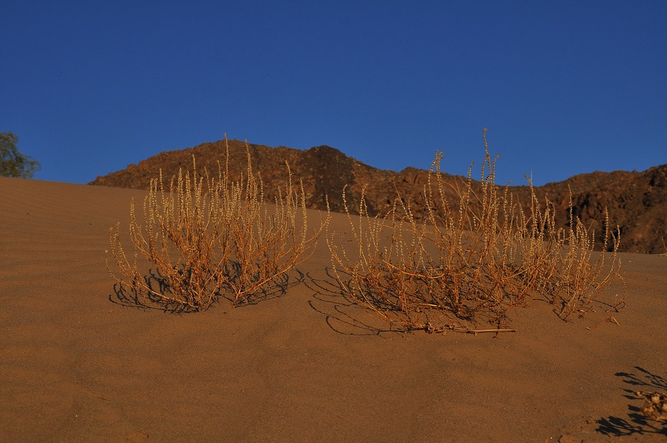 Desert, Landscape, Dry, Nature, Panoramic, Sky, Sand